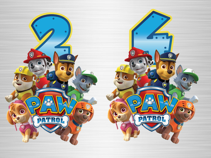 Paw Patrol Birthdayshirt Geburtstagsshirt